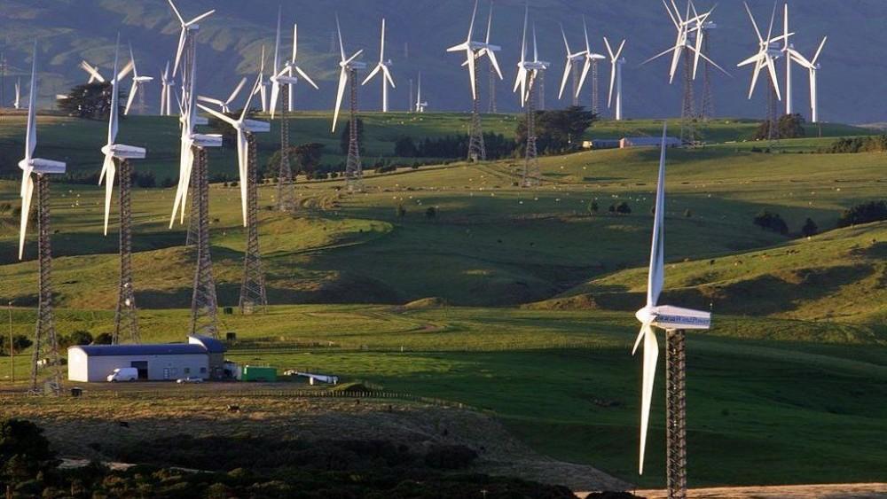 жаңа зеландия, климат, заң,