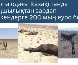 Еуропа одағы Қазақстанда қуаңшылықтан зардап шеккендерге 200 мың еуро бөледі