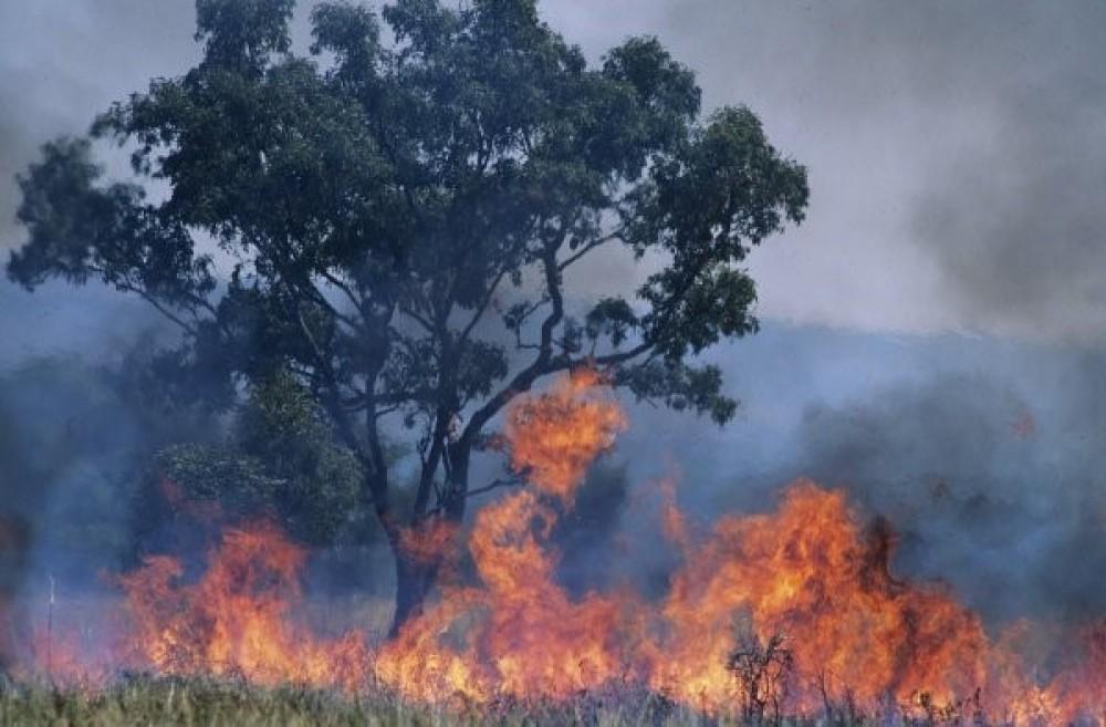 Экологтар әлемдегі табиғи апаттар санының артуын тіркеді